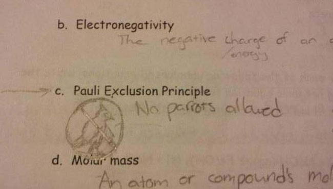 test-answers-that-are-totally-wrong-but-still-genius-6