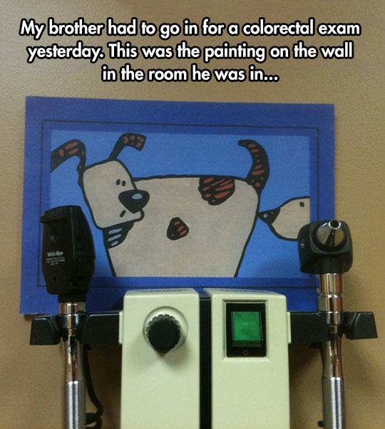 funny-doctors-office-dog-sniffing-painting-1